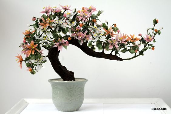 Pinterest the world s catalog of ideas for Bonsai vasi