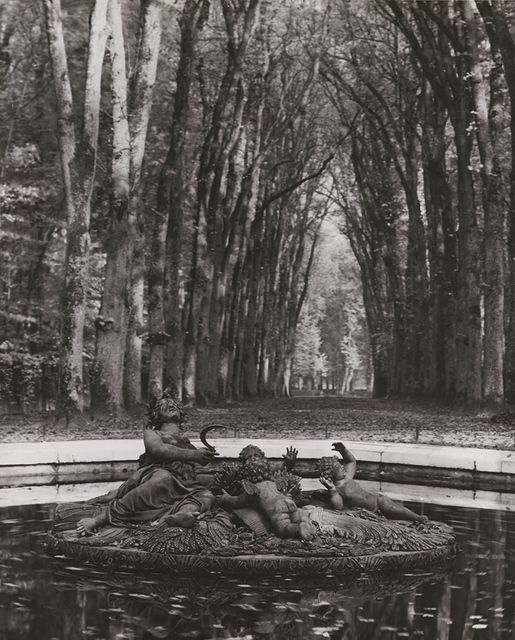 André Kertész  Versailles (Rows of Trees, Fountain)