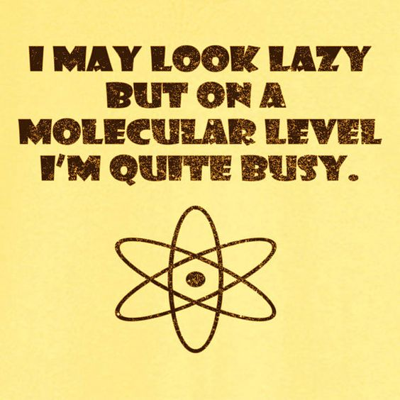 I May Look Lazy, but on a Molecular Level... Funny Novelty T Shirt Z12095, $18.99