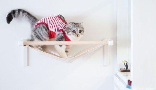 猫のケージを手作り 100均のワイヤーネットで簡単にdiyする方法 ウチブログ ハンモック 猫 猫の家具