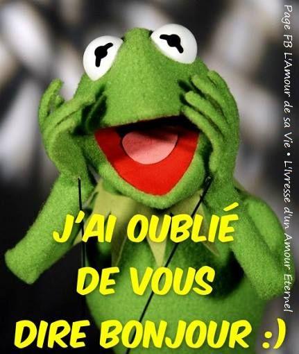 J Ai Oublie De Vous Dire Bonjour Bonjour Drole Bonjour Humour Citations Pour Dire Bonjour