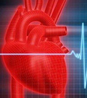 Personal Trainer David Maia: Um em cada cinco jovens tem níveis elevados de colesterol