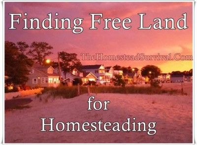 homestead survival the homestead and homesteads on pinterest
