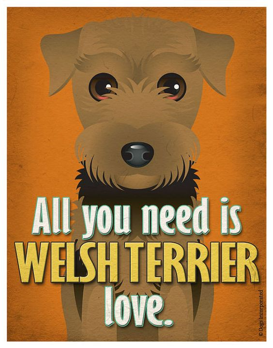 Welsh Terrier Art Print  All You Need is Welsh by DogsIncorporated, $29.00