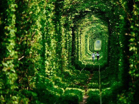 Tunnel of Love-Ukraine