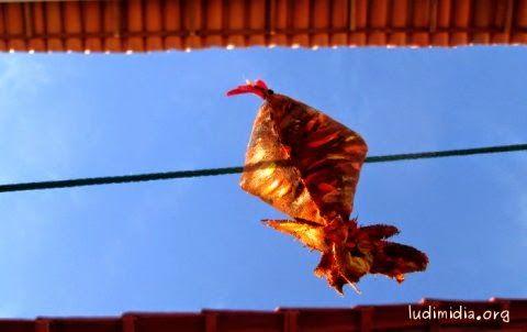 Galo de tecido secando no varal