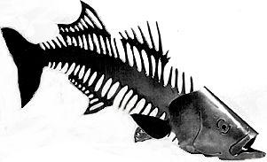 Need A Name??? - Page 3 - Striper Talk Striped Bass Fishing ...