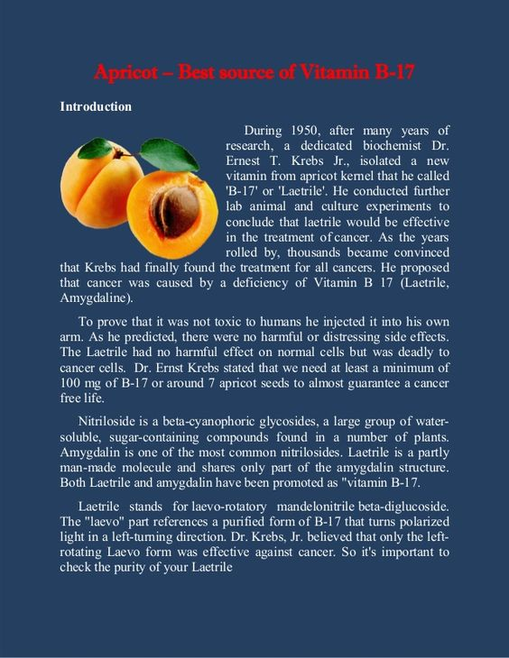 Apricot – Best source of Vitamin B-17 Introduction During 1950, after many years of research, a dedicated biochemist Dr. E...