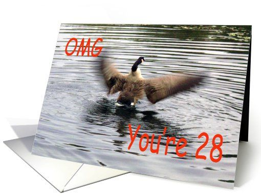 Happy 28th Birthday Goose flapping card
