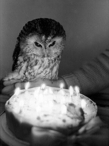 happy birthday me! ounn