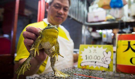 Những khu chợ ướt tại Singapore thường họp từ sáng cho đến trưa.