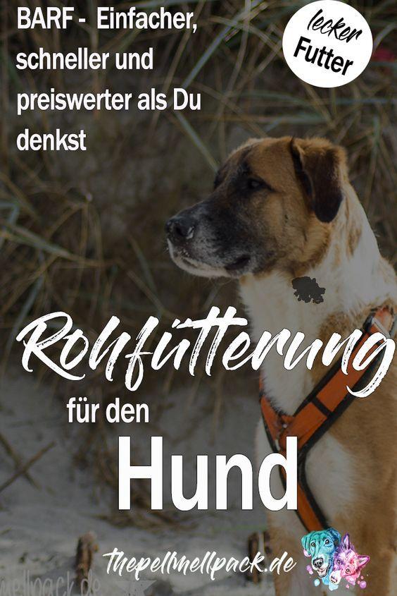 Natural Rearing Von Juliette De Bairacli Levy The Pell Mell Pack Hunde Ernahrung Hunde Futter Hundefutter