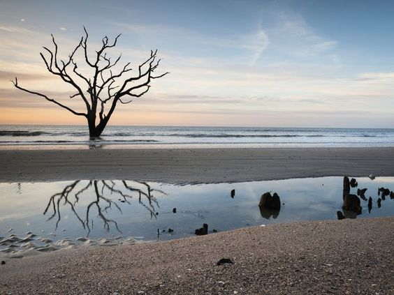 In South Carolina, a beach is never too far away, and some of the most wild and untouched can be found on Edisto Island, home of Botany Bay.