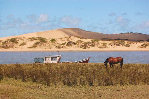 Dunas de Valizas, Rocha. Uruguay