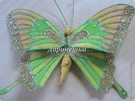 Мои бабочки + МК | Страна Мастеров