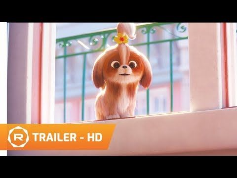 The Secret Life Of Pets 2 2019 The Daisy Trailer Regal Hd Youtube Secret Life Of Pets Upcoming Movie Trailers Secret Life