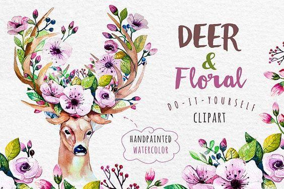 Deer, skull & floral - Illustrations