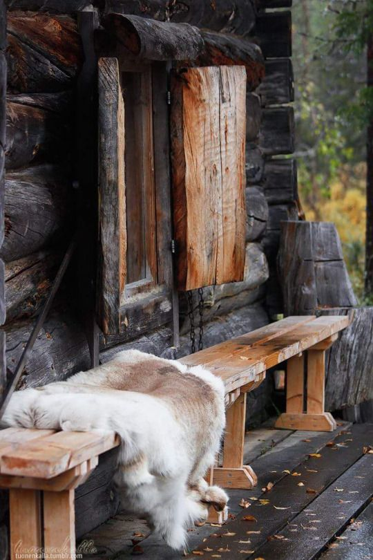 » fresh air » log homes » live off the land » hard work » clear streams » fishing & hunting » mountain men » simple life » sun & snow » backyard wildlife »: