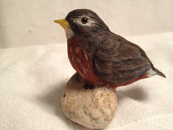 Baby Robin sitting on a rock