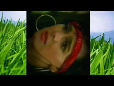 Ver El Cuatrero Vicente Fernandez Pelicula Completa Online Hd Full Peliculas Gratis Online Películas Completas Peliculas Romanticas Completas Peliculas