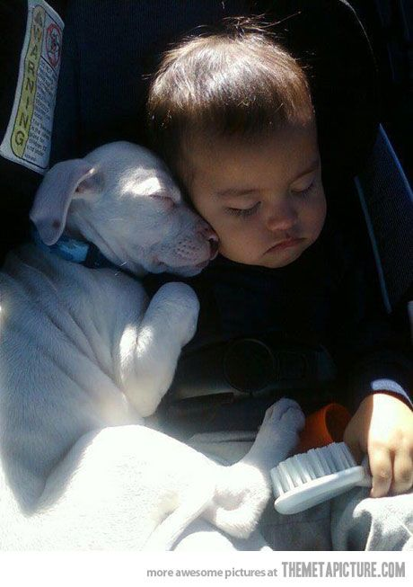 Family trips can be exhausting…aweeee