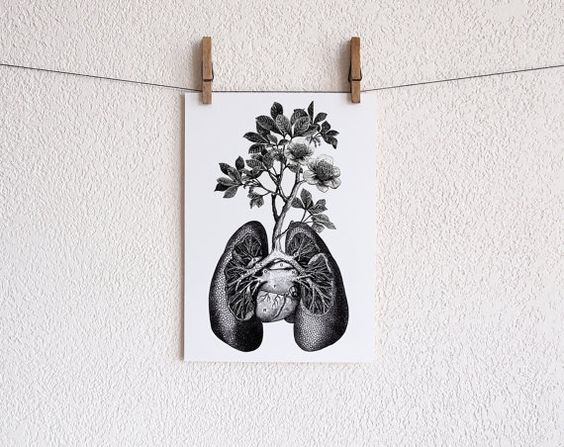 lungs pretty paintings Gallery