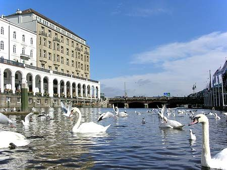 No this is not Venice in Italy, it is the Alster in Hamburg, the most beautiful city in the world!