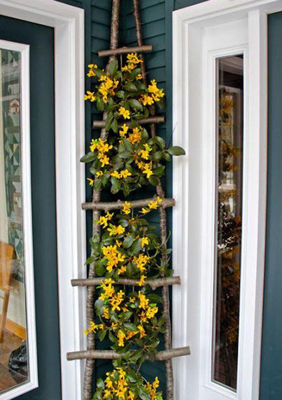 fiori arrampicati su scala in legno: