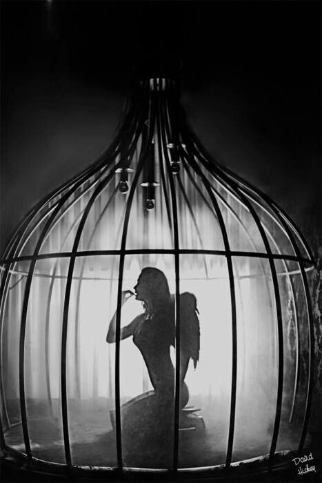 Resultado de imagen de trolls with Fairy in cages