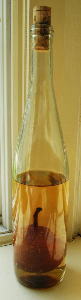 homemade pear homemade liquor and more pears bottle liquor homemade ...