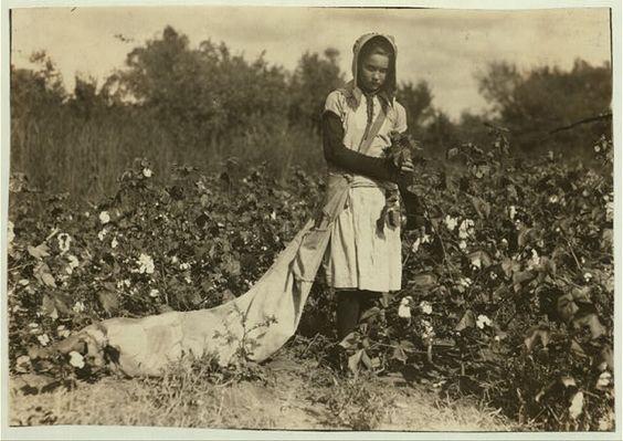 Callie Campbell  11 años.         Recoge de 75 a 125 libras de algodón al día.                        Condado Potawatomie-Oklahoma 16 de Octubre 1916.