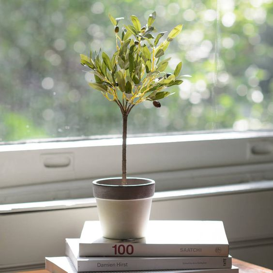 Little Artificial Mediterranean Potted Olive Tree Plant