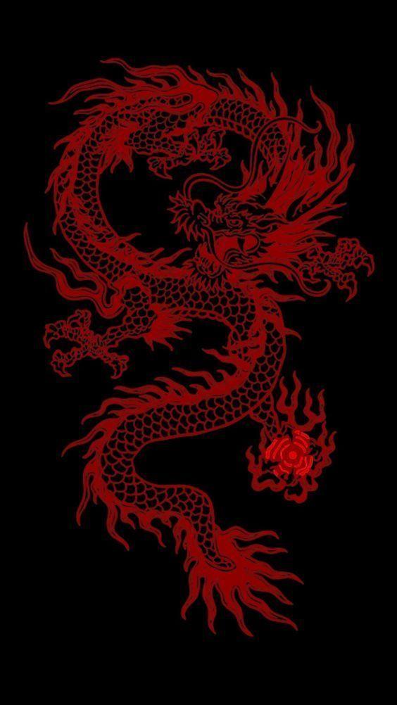 My Aesthetics Snake Wallpaper Dragon Wallpaper Iphone Dark Red Wallpaper