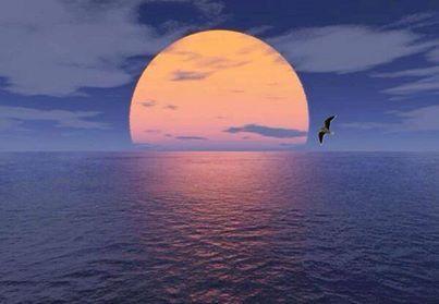 El mar de alcoba...