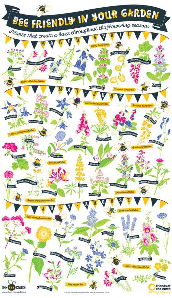 English Cottage Gardening - Bee Friendly In Your Garden
