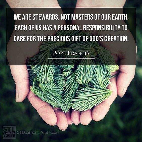 We are stewards not masters of our earth. Each of us has a personal responsibility to care for the precious gift of Gods creation. #PopeFrancis #conservation #stewardship: