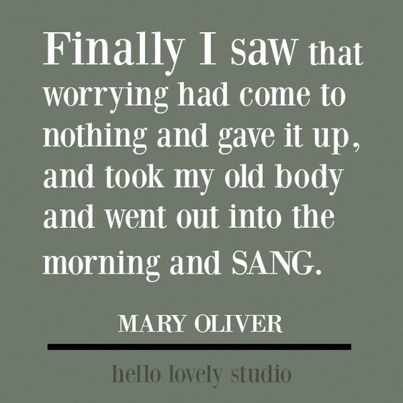 Inspirational quote from Mary Oliver poem about worry. #inspirationalquote #quotes #maryoliver #poetry