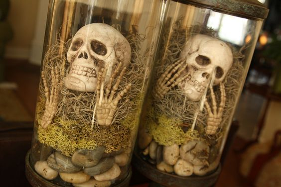 apothecary jars, pebbles/stones, mossy things, skulls and creepy hands