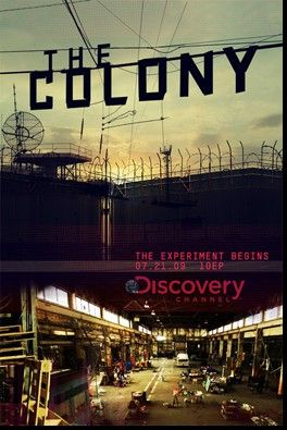The Colony, DISC