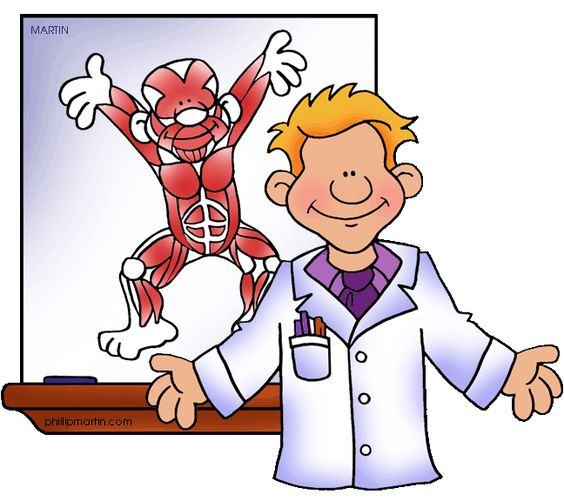 Muscles, Human Muscular System - Free Science Lesson Plans, Activities, Powerpoints, Interactive Games