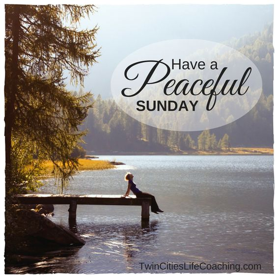Have a peaceful Sunday. Don't waste the day worrying about the future. Enjoy the NOW!