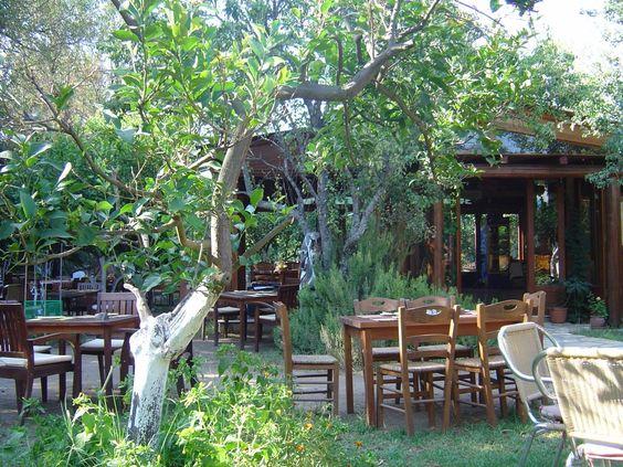 Korfu, Acharavi, Lemon Garden Photo from Acharavi in Corfu | Greece.com