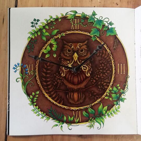 Owl Enchanted Forest. Coruja Floresta Encantada. Johanna Basford