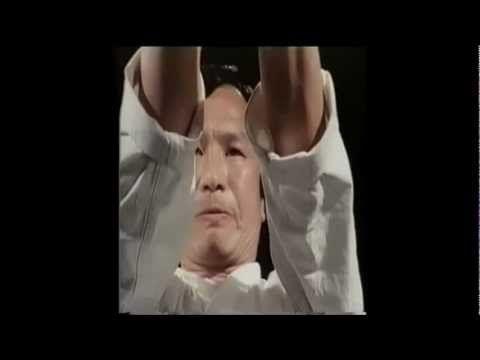Shotokan Karate Masters Demonstration