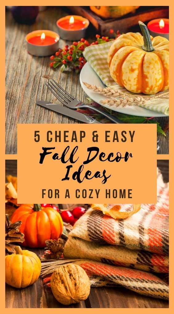 Best Thanksgiving Ideas For 2020 Thanksgiving Diy Decorations Food Recipes In 2020 Cheap Fall Decor Fall Decor Easy Fall Decor