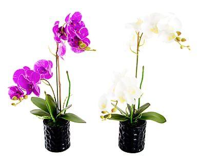 Set di 2 piante artificiali Orchidea con vaso nero, 10x50 cm