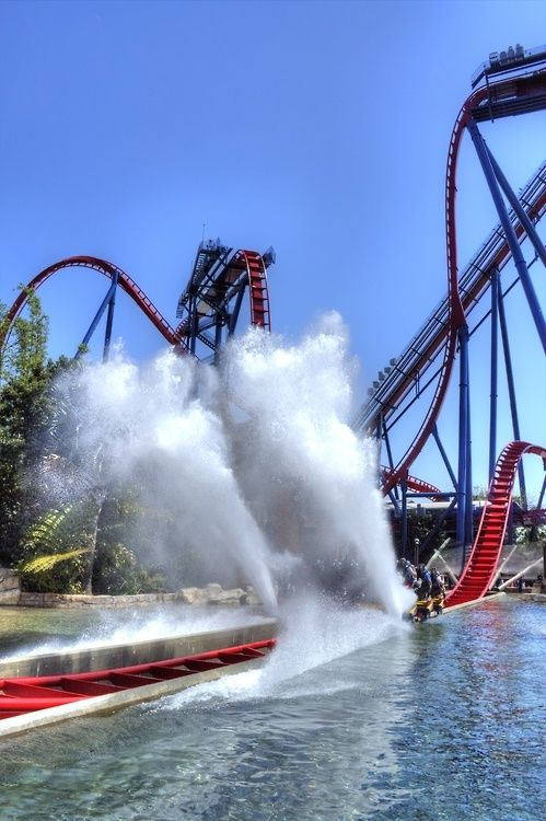 #Busch Gardens, #Florida #rollercoaster @Trey Philips Philips Busch Gardens Tampa - Sheikra