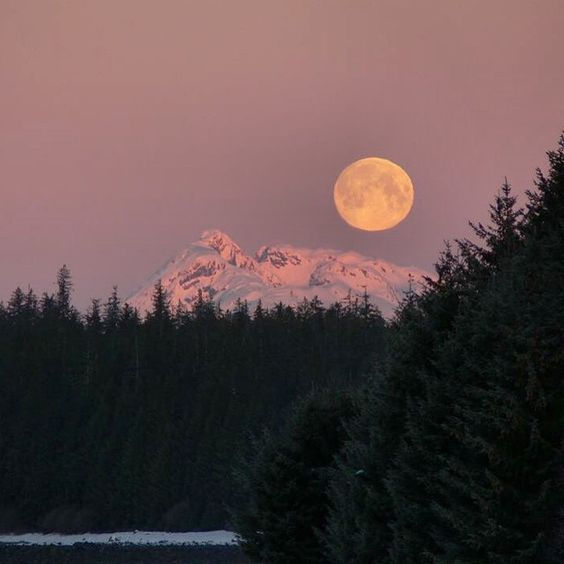 Gorgeous shot of the full moon rising over Glacier Bay National Park and Preserve in Alaska. Covering 3.3 million acres of rugged mountains, dynamic…
