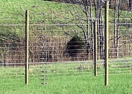 electric deer fence Bing images Deer proof Pinterest Wire