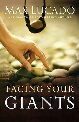The book is biblically accurate and touches on a number of factors you should consider while facing your own giants. Facing Your Giants is a fantastic read for anyone who is struggling with problems (which would be just about anyone alive). . I'd recommend this book to anyone!